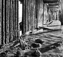 Monochrome Under the Pier by Silken Photography