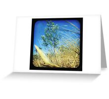 When the Wind Blows-Version ii Greeting Card