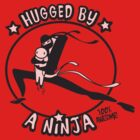 Hugged By A Ninja by LilyM