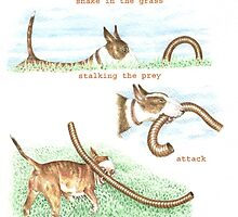 H IS FOR HUNTING From A Bull Terrier's Alphabet. by threebrownhares