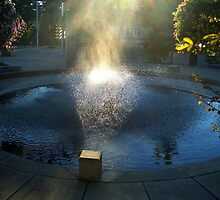 Fountain spray by Starling