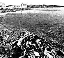 Island La Maddalena: sea landscape and prickly pear by Giuseppe Cocco