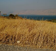 Kineret, Sea of Galilee. by gaddi s
