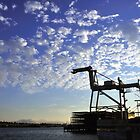 Riding the Sunset  •  Jack London Square by Richard  Leon