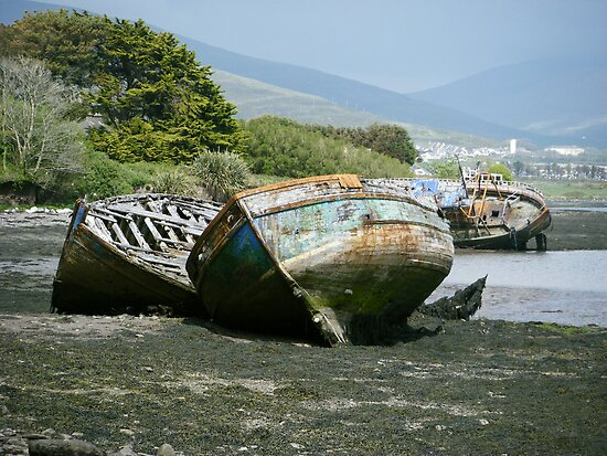 Old Boats in retirement by Connie  Danaher