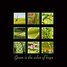 Green is the color of hope by Bonnie T.  Barry
