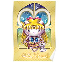 Hello Venus Poster