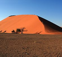 Dune 45 Namibia by aidan  moran