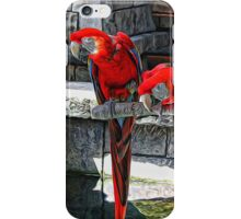 Scarlet Macaws Painted iPhone Case/Skin