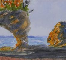Hopewell Cape Rocks Sticker