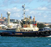Newcastle Harbour - Switzer Hamilton Tug Boat by Phil Woodman