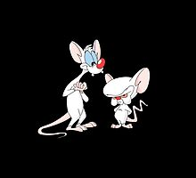Pinky and the Brain by TheNorthWolf