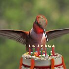 Birthday Bird by Ken  Aitchison