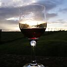 red wine in the sunset  by mikequigley
