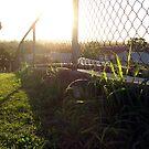 Sun Go Down by gracelouise