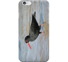 Sooty Oystercatcher - striding out purposefully. iPhone Case/Skin