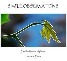 My Blurb Book by Catherine Davis