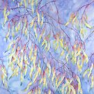 Beneath Blue Mountain Gums III © Patricia Vannucci 2008 by PERUGINA