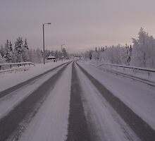 Rush hour traffic in Lapland by Jonathan Reed