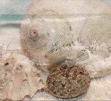 Ocean Side by Crista Peacey