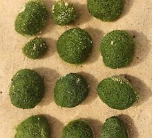 Green balls washed up on the beach ......... by Nina  Matthews Photography