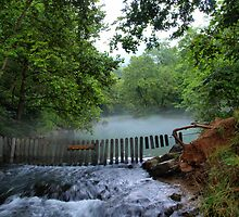 Spring Outlet - Ha Ha Tonka State Park by Joe Thill