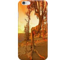 Grand Canyon Sunny iPhone Case/Skin