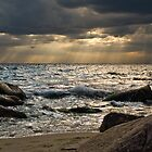 Rocky Beachscapes by Kofoed