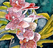 hybrid orchids flower watercolor painting  by derekmccrea