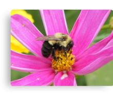 Humble Bumble Bee Canvas Print