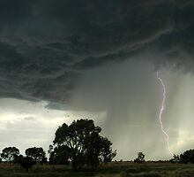 Collarenabri Lightning by Michael Bath