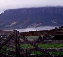 photoj Tas, Mt Roland, Early Morning Fog by photoj
