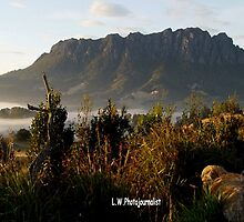 photoj Tas, Mt Roland Foggy Sunrise by photoj