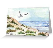 The Seagull and the beach Greeting Card