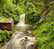 Rydal Hall Waterfall by Stewart Laker