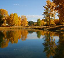 AUTUMN IN KOOTENAI COUNTRY by kotybear