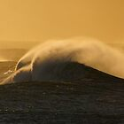 Swell by Dannyvan