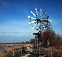 Windmill in Dutch Landscape by ienemien