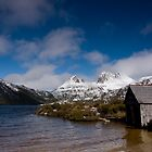 Dove Lake by Edward Hor