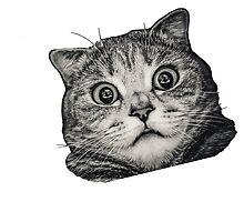kitty 3 by husnik77