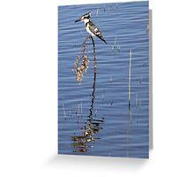 Giant Kingfisher Greeting Card