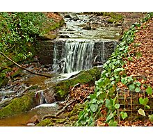 Babling Brook Photographic Print