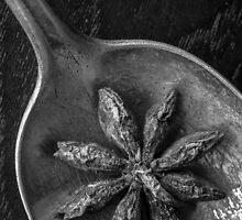 Star Anise by Edward Fielding
