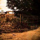 Country Gate by Simon Bowker