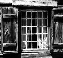 Windows to the past by Harlan Mayor