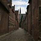 The Old street of Leuven (Belgium) by Antanas