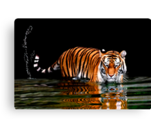 THE FLICK OF A TIGER'S TAIL Canvas Print