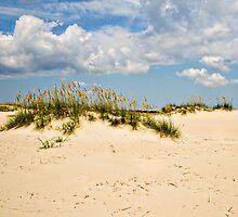 Dunes by hcromer