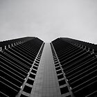Looking Up by Alvin Dewse