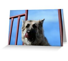 Let me lick my lips first Momma! Greeting Card